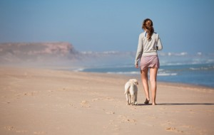 passeando com o cão sem coleira